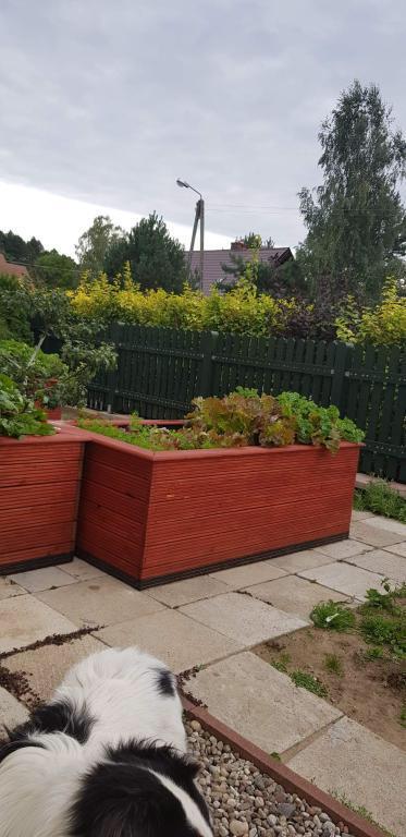 donica ogrodowa 200 cm